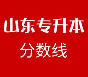 2019年山东专升本分学校分专业投档分数线