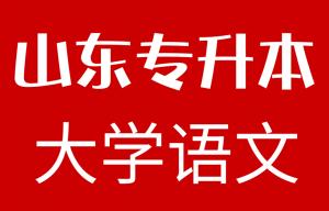 2019年山东专升本大学语文真题